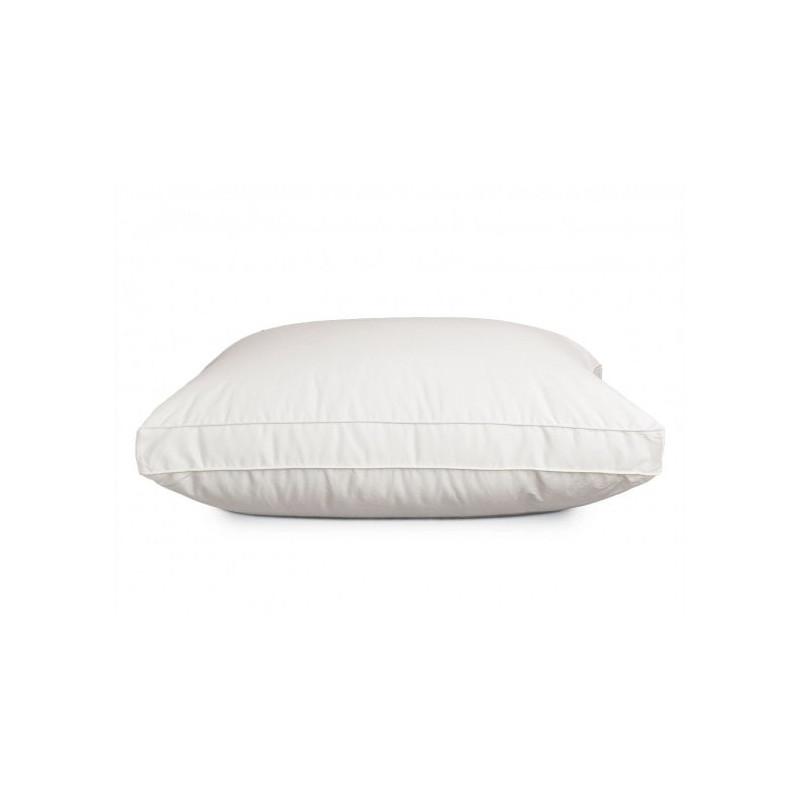 large-Pillow_Alexis_Dwn.jpg
